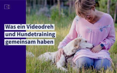 Videos drehen ist wie Hundetraining